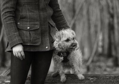 happyhounds-dogwalking